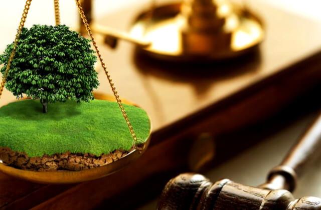 До бюджету міста відшкодовують кошти за незаконне використання земель
