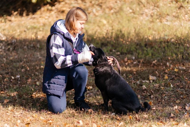 У міському притулку відзначили річницю відкриття pets-friendly контакт-центру