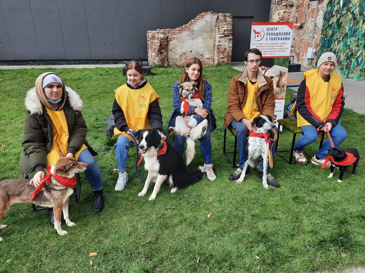 Притулок для тварин взяв участь у кінологічному фестивалі